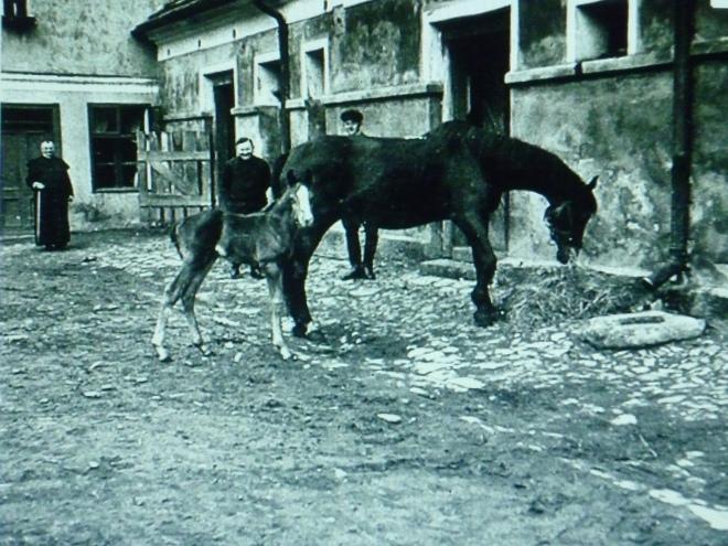 z końmi gościęcin